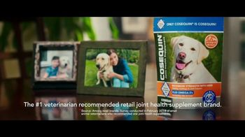 Cosequin TV Spot, 'Joint Health Supplements for Your Dog' - Thumbnail 5