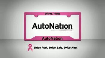 AutoNation 1Price Pre-Owned Vehicles TV Spot, 'Dream Vehicle' - Thumbnail 10