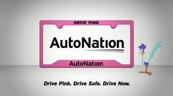 AutoNation 1Price Pre-Owned Vehicles TV Spot, 'Clear' - Thumbnail 10
