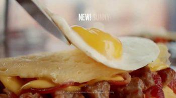 Denny's Ooh La La Omelettes TV Spot, 'The Art of the Omelette' - 670 commercial airings