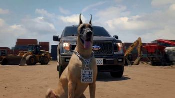 Ford F-150 TV Spot, 'The Big Dog' [T1] - Thumbnail 7