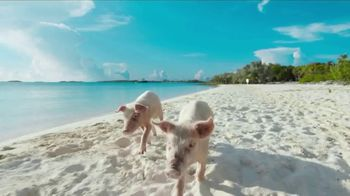 The Islands of the Bahamas TV Spot, 'Fly Away' Featuring Lenny Kravitz