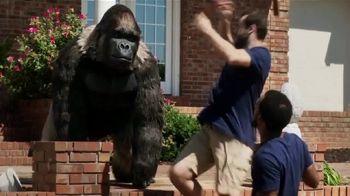 Gorilla Glue TV Spot, 'Movers' - Thumbnail 3