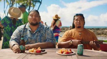 Kona Brewing Company Big Wave Golden Ale TV Spot, 'To Don't List' - Thumbnail 3