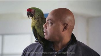 Capital One March Madness TV Spot, 'Bracket Buddy' Featuring Larry Bird, Charles Barkley - Thumbnail 8