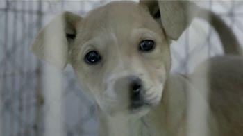 ASPCA TV Spot, 'Trapped'