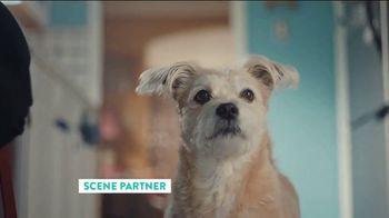 The Shelter Pet Project TV Spot, 'Adopt Pure Love: Rachel Bloom PSA'
