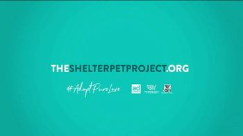 The Shelter Pet Project TV Spot, 'Adopt Pure Love: Rachel Bloom PSA' - Thumbnail 10