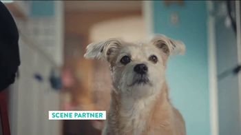 The Shelter Pet Project TV Spot, 'Adopt Pure Love: Rachel Bloom PSA'