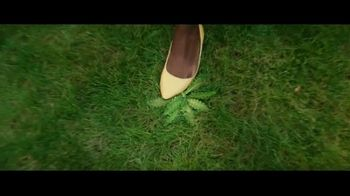 Spectracide Weed Stop For Lawns TV Spot, 'Spring Cleaning' - Thumbnail 5