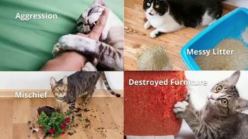 Animal Behavior College TV Spot, 'Become a Certified Cat Trainer'