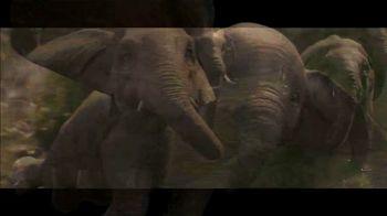 Dumbo - Alternate Trailer 52