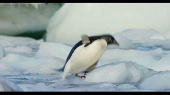 Penguins - Alternate Trailer 5