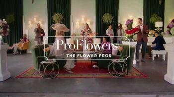ProFlowers TV Spot, 'Order Like a Pro With ProFlowers' Featuring Troy Aikman - Thumbnail 1