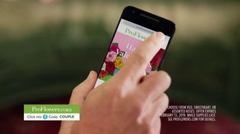 ProFlowers TV Spot, 'Order Like a Pro With ProFlowers' Featuring Troy Aikman - Thumbnail 8
