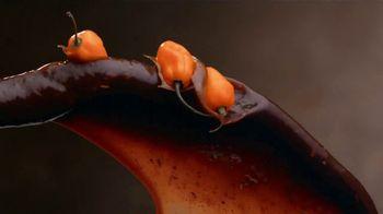 Zaxby's Carribbean Jerk Boneless Wings Meal TV Spot, 'No Matter How You Say It: Flavor' - Thumbnail 6