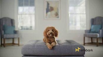 Embark Dog DNA Test TV Spot, 'Why?' - Thumbnail 1