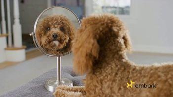 Embark Dog DNA Test TV Spot, 'Why?' - Thumbnail 2