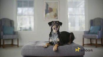 Embark Dog DNA Test TV Spot, 'Why?' - Thumbnail 6