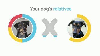 Embark Dog DNA Test TV Spot, 'Why?' - Thumbnail 9