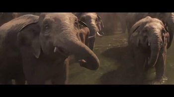 Dumbo - Alternate Trailer 62