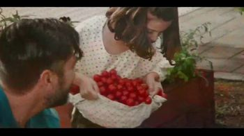 Miracle-Gro Performance Organics TV Spot, 'No Compromise' - Thumbnail 3