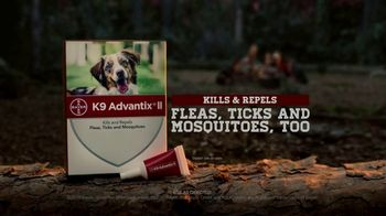 K9 Advantix II TV Spot, 'Campfire' - Thumbnail 8