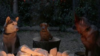 K9 Advantix II TV Spot, 'Campfire' - Thumbnail 3