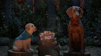 K9 Advantix II TV Spot, 'Campfire' - Thumbnail 5
