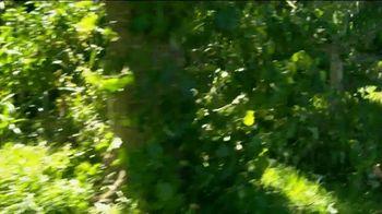 STIHL TV Spot, 'Battery Power: Lawn Orchestra' Song by Nikolai Rimsky-Korsakov - Thumbnail 6