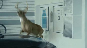 State Farm TV Spot, 'Deer' Featuring Chris Paul, Oscar Nuñez - Thumbnail 4