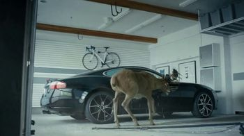 State Farm TV Spot, 'Deer' Featuring Chris Paul, Oscar Nuñez - Thumbnail 7