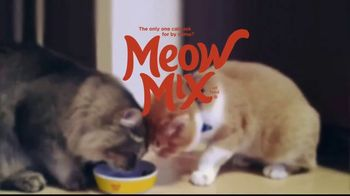 Meow Mix TV Spot, 'Litter Boxes and the Vault' - Thumbnail 10