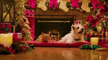 Balsam Hill TV Spot, 'Hallmark Movies & Mysteries: Miracles of Christmas'