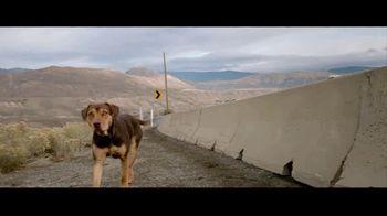 A Dog's Way Home - Alternate Trailer 6