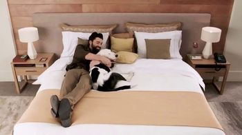 trivago TV Spot, 'Páginas de hoteles' [Spanish] - Thumbnail 10