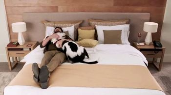 trivago TV Spot, 'Páginas de hoteles' [Spanish] - Thumbnail 9