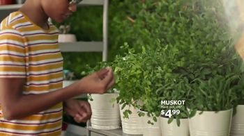 IKEA TV Spot, 'Cooking Competition: Click & Collect' - Thumbnail 3