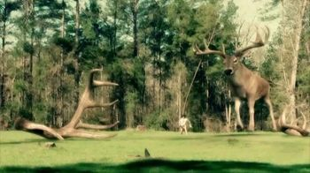 Buck Forage Oats TV Spot, 'History' - Thumbnail 5