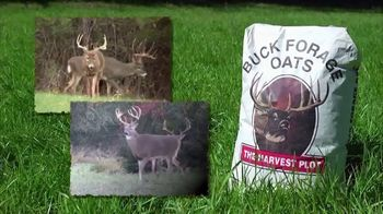 Buck Forage Oats TV Spot, 'History' - Thumbnail 8
