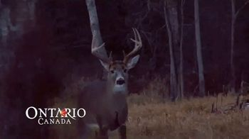 Go Hunt in Ontario TV Spot, 'Now's the Time' - Thumbnail 4