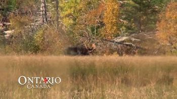 Go Hunt in Ontario TV Spot, 'Now's the Time' - Thumbnail 5