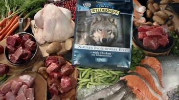Blue Buffalo BLUE Wilderness TV Spot, 'Wolf Dreams: Meat-Rich' - Thumbnail 7