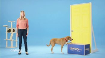Chewy.com TV Spot, 'Get It Delivered: 30 Percent' - Thumbnail 7