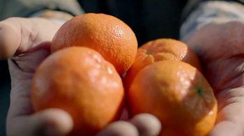 H-E-B TV Spot, 'SunWest Family Orchard: Bella Mandarins' - Thumbnail 3