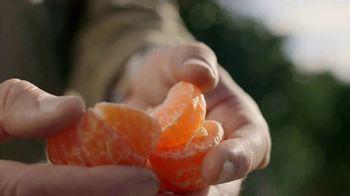 H-E-B TV Spot, 'SunWest Family Orchard: Bella Mandarins' - Thumbnail 6