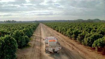 H-E-B TV Spot, 'SunWest Family Orchard: Bella Mandarins' - Thumbnail 8