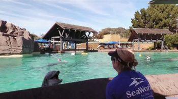 SeaWorld Fun Card TV Spot, 'Always Real. Always Amazing' - Thumbnail 2