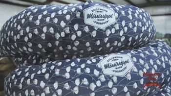 Hollywood Feed TV Spot, 'Mississippi Made Dog Beds' - Thumbnail 5