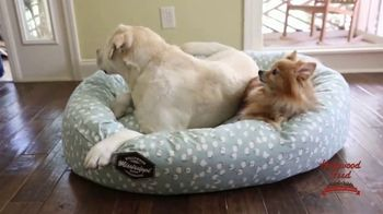 Hollywood Feed TV Spot, 'Mississippi Made Dog Beds' - Thumbnail 9